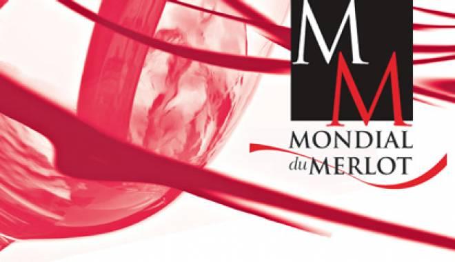 Mondial du Merlot 2012: 6 silver medals for Italy