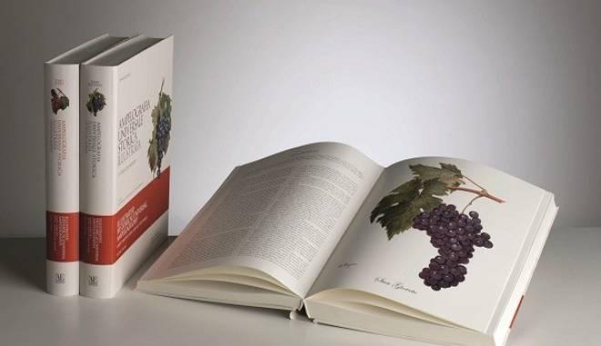 Ampelografia Universale Storica Illustrata: a treasure in the Castle