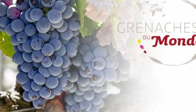 Grenaches du Monde 2014: 6 medals for Italian Cannonau wines
