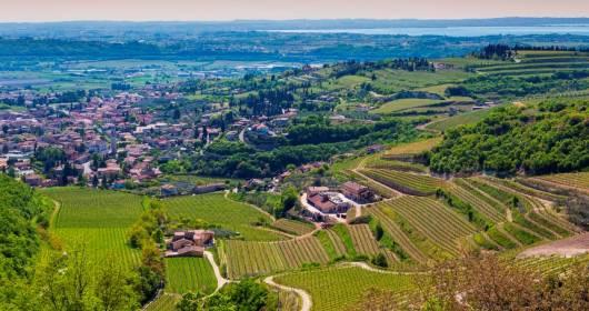 AUTOCHTONA 2014: 21st/22nd October, Bolzano hosts the Forum of local wines