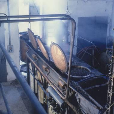 Distilleria e Vitivinicola Miotto