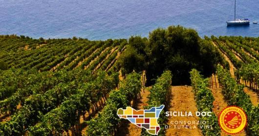 Consorzio di Tutela Vini DOC Sicilia opens the Sicilia DOP Academy