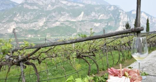 Strada Vino Trentino Bond to support activities in the restart phase