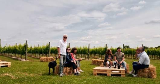 2nd weekend of Open Vineyards in Friuli Venezia Giulia