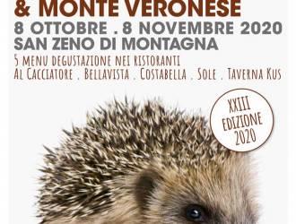 Bardolino chestnuts Monte Veronese the protagonists of autumn on Monte Baldo