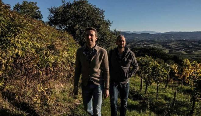 Cormòns in the Collio FVG Ronco dei Tassi