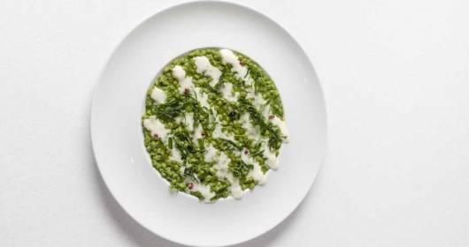 Friuli Venezia Giulia Via dei Sapori - The New Cuisine Chapter 2