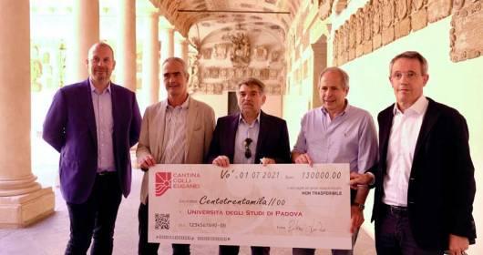 Cantina Colli Euganei funds the research: 130,000 euros to the University of Padua