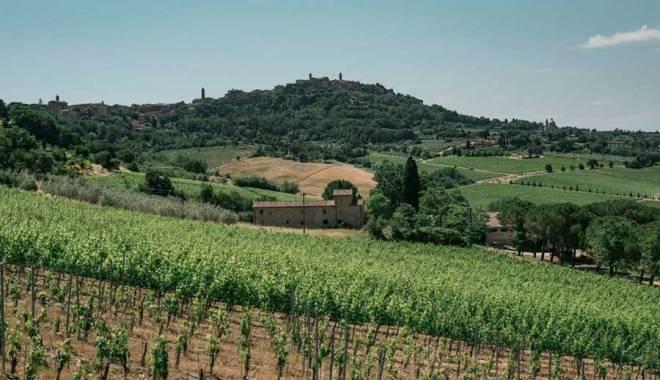 """Fattoria della Talosa: in the new """"Pievi"""" the excellence of the Vino Nobile di Montepulciano"""