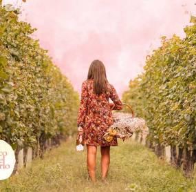 LIFE IN ROSÉ: BOSCO DEL MERLO FOR LILT TREVISO